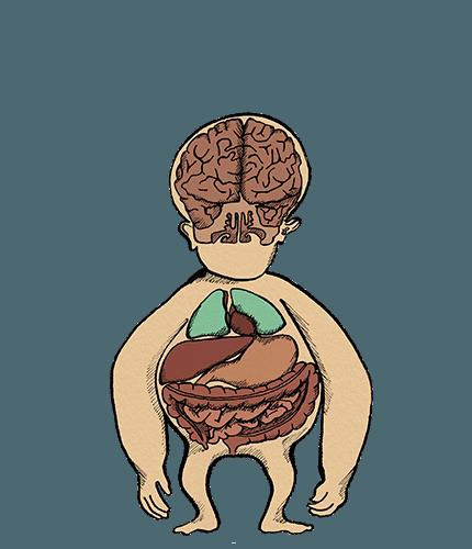 Rest&Digest Internal Body